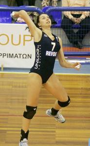 http://img169.imagevenue.com/loc677/th_876749738_volleyball_girls_01_122_677lo.jpg